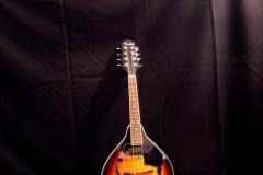 Fender Mandoline
